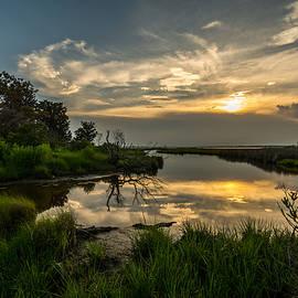 Bret Gardner - Sunset over the marsh