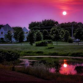 Thomas Woolworth - Sunset Over The Urban Pond Purple