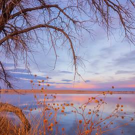 Darren White - Sunset Overhang