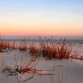 Sunset Sea Oats  by Kathy K McClellan