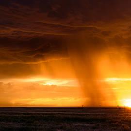 Paul Moore - Sunset Shower