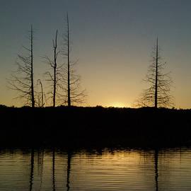 Michael Peychich - Sunset Silhouette 2381