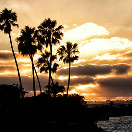 Ruth Jolly - Sunset silhouette in San Diego