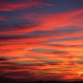 Sally Weigand - Sunset Sky