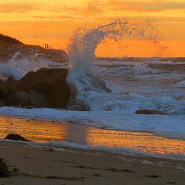 Dianne Cowen - Sunset Splash