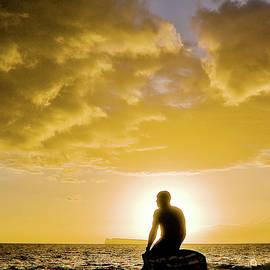 Craig Andrews - Sunset Surfer