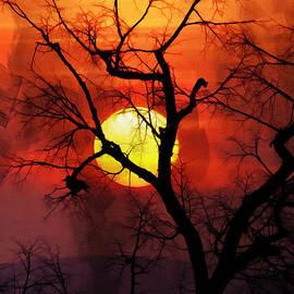 Gull G - Sunset Tree 01