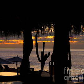 Sunsets Tiki huts and cacti Cabo by Charlene Cox