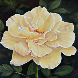 Sunshine Rose by Jimmie Bartlett