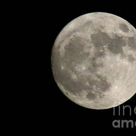 Gary Gingrich Galleries - Super Moon 11-13-16