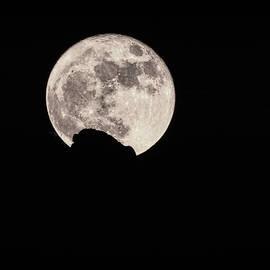 Super Moon 2016  by Saija Lehtonen