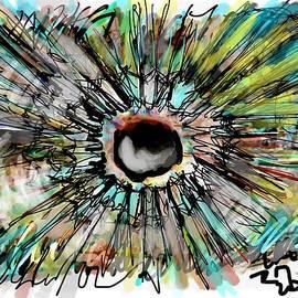 Supernova by Ricardo Mester