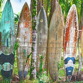 Craig Voth - Surfboard Fence