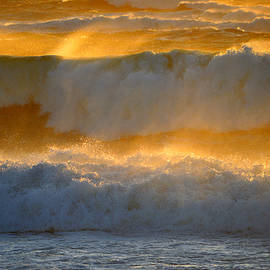 Surf in Gold by Dianne Cowen Photography
