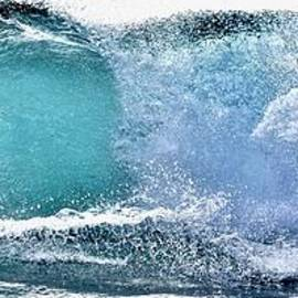 Debra Banks - Surfer