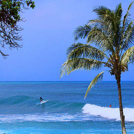Michael Rucker - Surfers of Hawaii