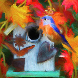 Darren Fisher - Surrounded In Fall Color