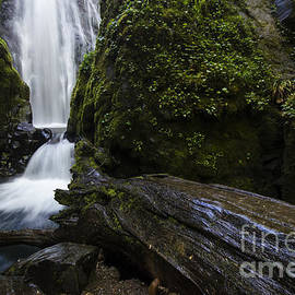 Susan Creek Falls Oregon 3 by Bob Christopher