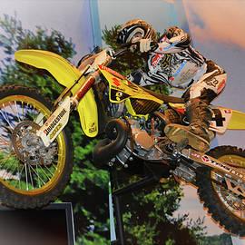 Suzuki in Flight by Mike Martin