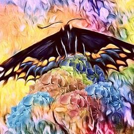 Jenn Teel - Swallowtail Abstract