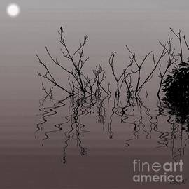 Swamp Fever by Barbara S Nickerson