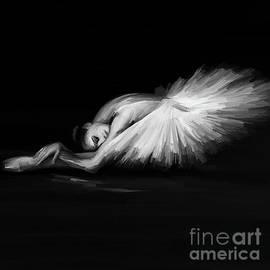Swan Lake  by Gull G
