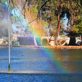 Kathryn Meyer - Swan Lake Rainbow