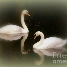 Myrna Bradshaw - Swans Reflecting