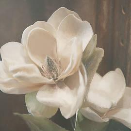 Teresa Wilson - Sweet Magnolia Blossom