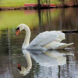 Linda Howes - Sweet Swan