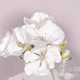 Sweet White Geraniums by Sherry Hallemeier