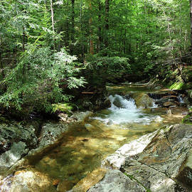 Swift River in White Mountains, New Hampshire by Maili Page