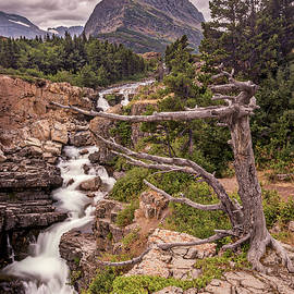Swiftcurrent Lake Falls - Peter Tellone