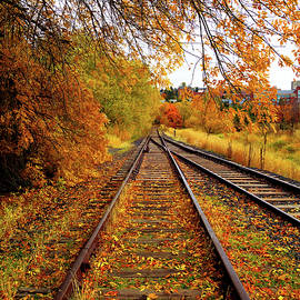 Switching To Autumn by David Patterson