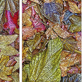 Joel Bruce Wallach - Sycamore Autumn Visions - Triptych