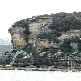 Sydney Harbour Cliffs by Leanne Seymour
