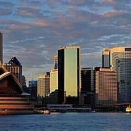 Blackwater Studio - Sydney Skyline