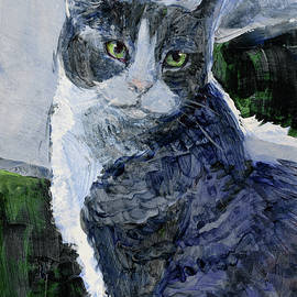 Tracie Thompson - Tabby in a Blue Room