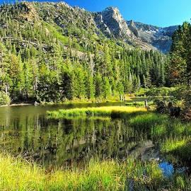 Tahoe Morning Hello World by Norma Brandsberg