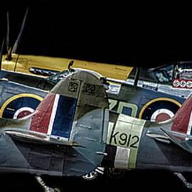 Martin Newman - Tail Fins