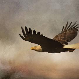 Jai Johnson - Take Flight
