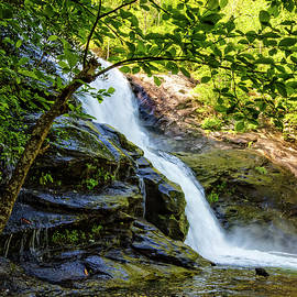Tall Falls in the Smokies by Debra and Dave Vanderlaan