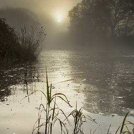 Tamar River winter  Sunrise, UK by Maggie McCall