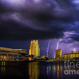 Quinn Sedam - Tampa Lightning