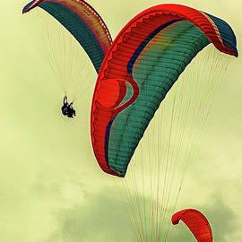 Christian Hallweger - Tandem Paragliding