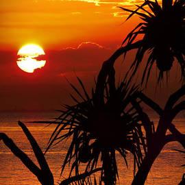 Tangalooma Sunset by Trudee Hunter