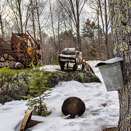 Tapping A Maple Sugar Tree by Betty Pauwels