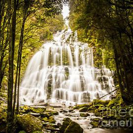 Tasmanian Waterfalls by Jorgo Photography - Wall Art Gallery