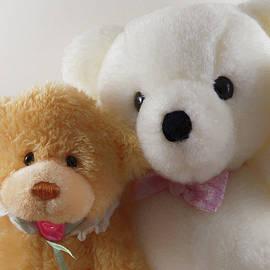 Jill Nightingale - Teddy Bear Couple