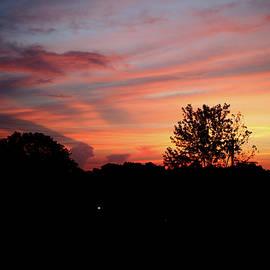 Ericamaxine Price - Tennessee Sunset 305